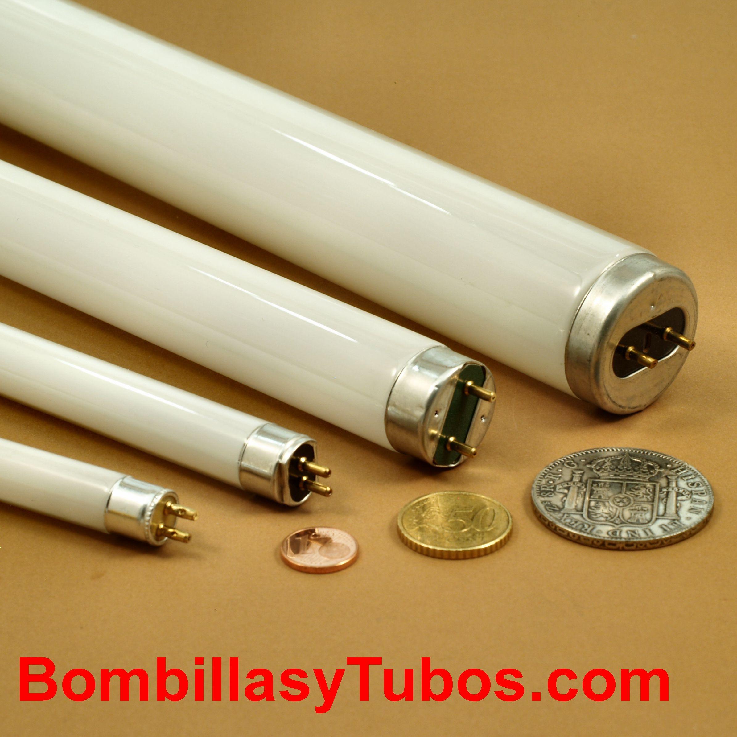 Tamaños y formatos de los tubos fluorescentes. T4, T5, T8