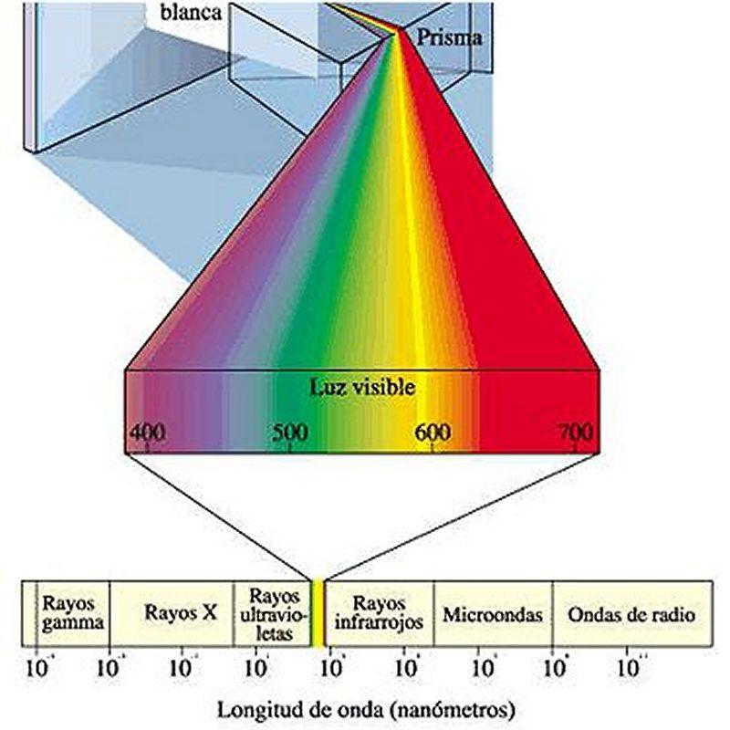 Luminotecnia. Que es la luz ? Cual es el espectro visible ?