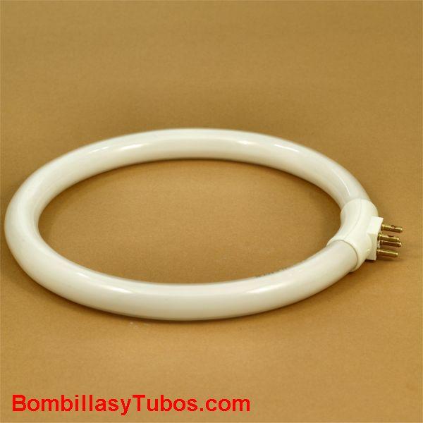 Fluorescente t4 circular 12w 6400k g10q - Tubo fluorescente t4 circular g10q 140mm contactos hacia fuera para lupas