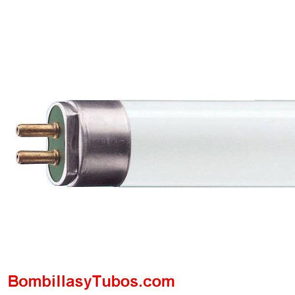 FLUORESCENTE T5 6w/640 - Fluorescente t5  6w/640  21cm