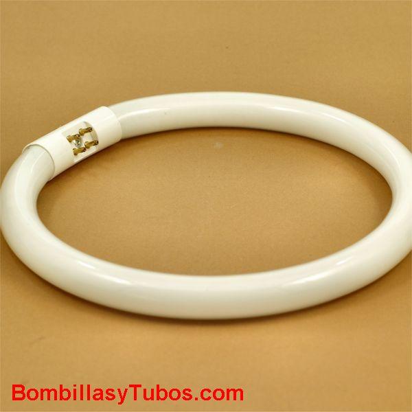 Fluorescente T5 circular 55w 2700k - Tubo fluorescente t5 circular 55w 2700 luz blanco calido