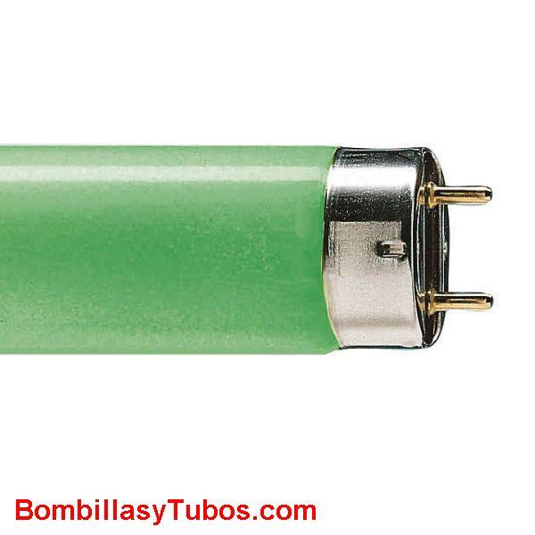 FLUORESCENTE T8 36w/66 VERDE - FLUORESCENTE 36w/66 VERDE  base g13   medidas:26x1200mm  referencias:L36/66 verde. tl-d 36w/67  64300140, 36w verde, 0002566