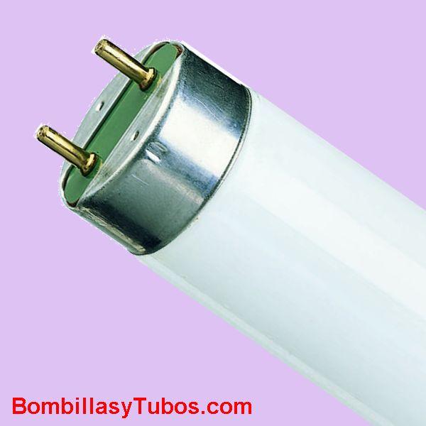 FLUORESCENTE TL-30w/10 ACTINICO BL 90 CM - Tubo fluorescente ultravioleta-A. 368 nanometros para serigrafia, imprenta y pruebas envejecimiento