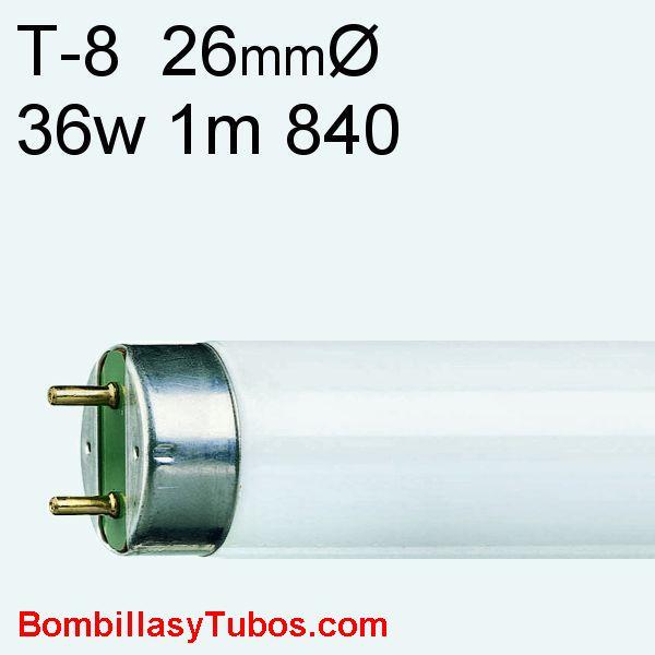 FLUORESCENTE T8 36w 840 1m - Fluorescente 36w 840 1 metro