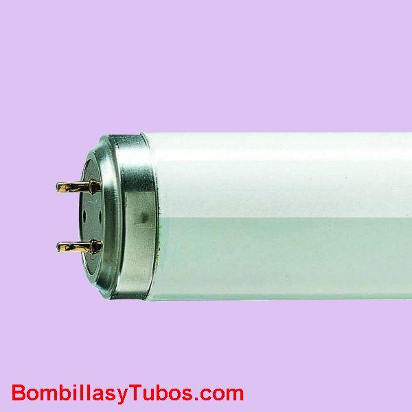 Fluorescente TL 100w 10-R - Fluorescente actinico de 177cm de longitud y 100w de potencia. Incorpora reflector apara dirigir la luz en un solo sentido para maximizar el rendimiento