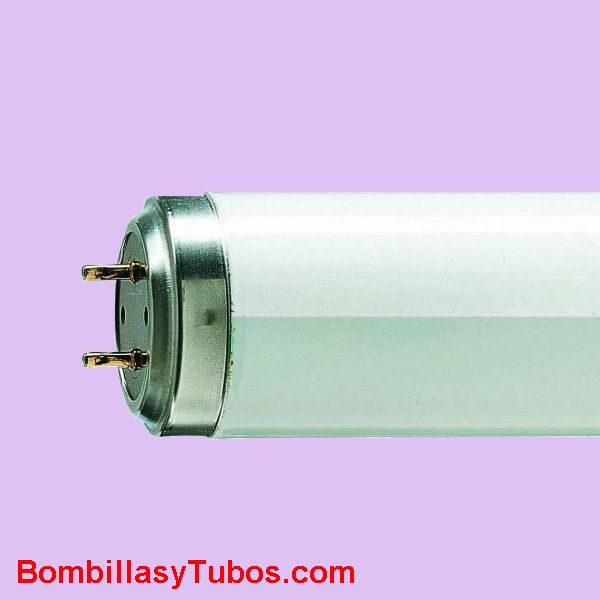 Fluorescente TL 60w 10-R  120cm - Fluorescente actinico de 120cm de longitud y 60w de potencia. Incorpora reflector interno