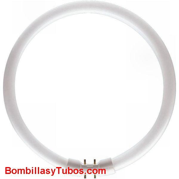FLUORESCENTE T5 40w/830 - MASTER TL5 CIRCULAR 40W/830  temp.color:3000 (calido)  base 2gx13  diametro:305 mm  flujo luminoso: 3300 lumenes  64097025. 640970xx  referencias:Philips master tl 5, tl5 circular   bonalux t5, lumilux t5 fc, fc 40w830