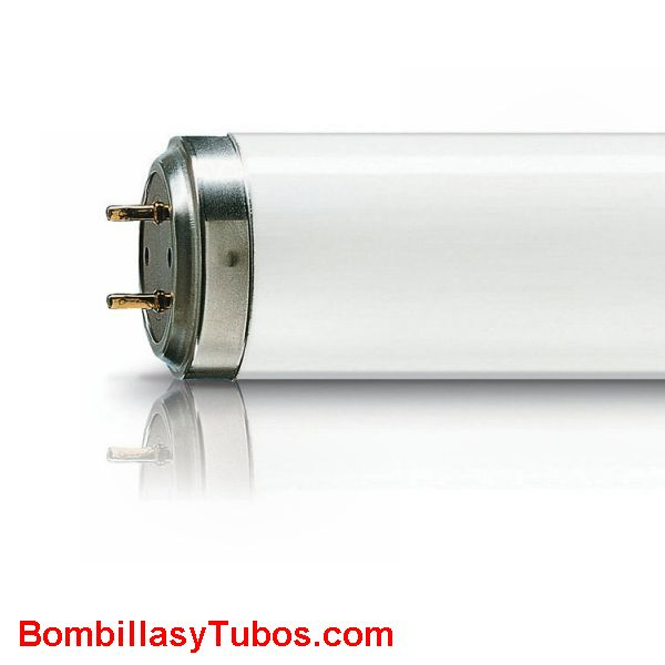 Philips TL 20w -01 RS . Ultravioleta B 305-315 nanometros