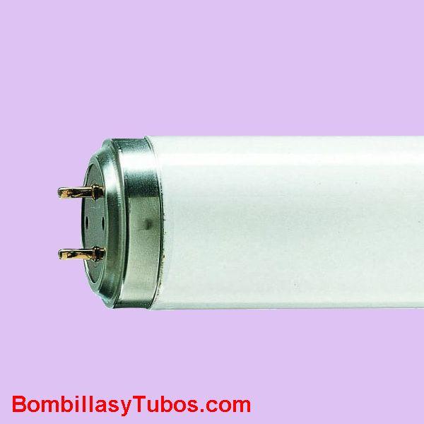 Fluorescente TL 140w 03 - Fluorescente actinico de 150cm de longitud y 140w de potencia. Super actinico